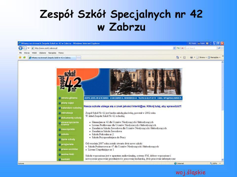 Zespół Szkół Specjalnych nr 42 w Zabrzu woj.śląskie
