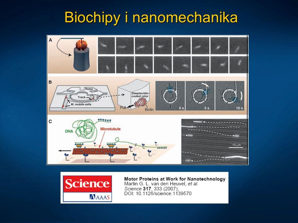 Biochipy i nanomechanika