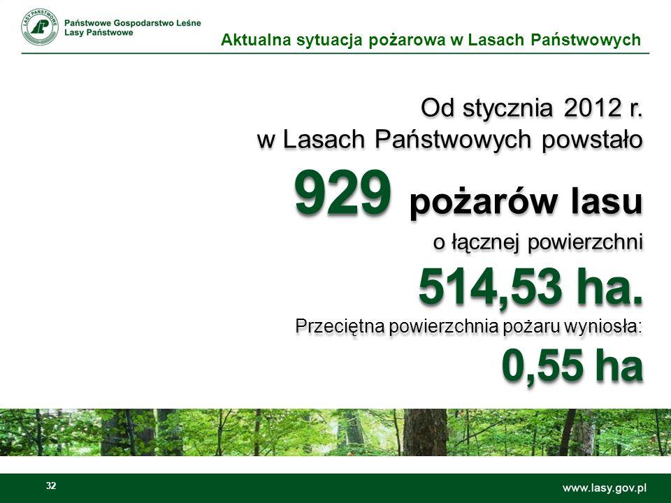 33 Tylko jednego dnia – 25.03.2012 roku wybuchło: 227 227 pożarów Tylko jednego dnia – 25.03.2012 roku wybuchło: 227 227 pożarów Aktualna sytuacja pożarowa w Lasach Państwowych
