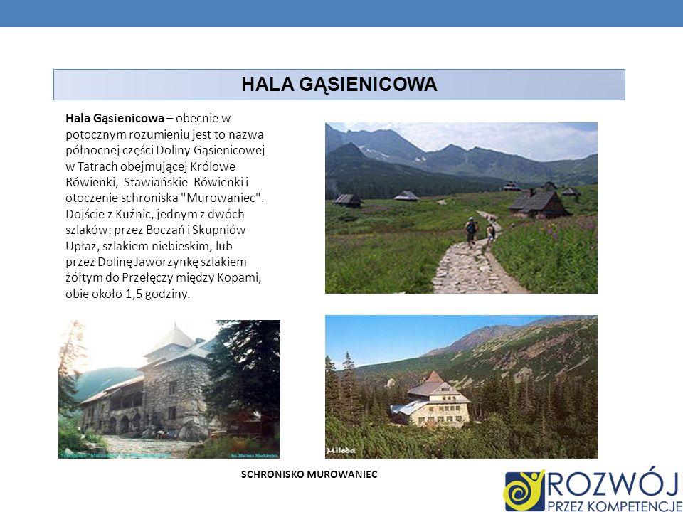 HALA GĄSIENICOWA Hala Gąsienicowa – obecnie w potocznym rozumieniu jest to nazwa północnej części Doliny Gąsienicowej w Tatrach obejmującej Królowe Ró