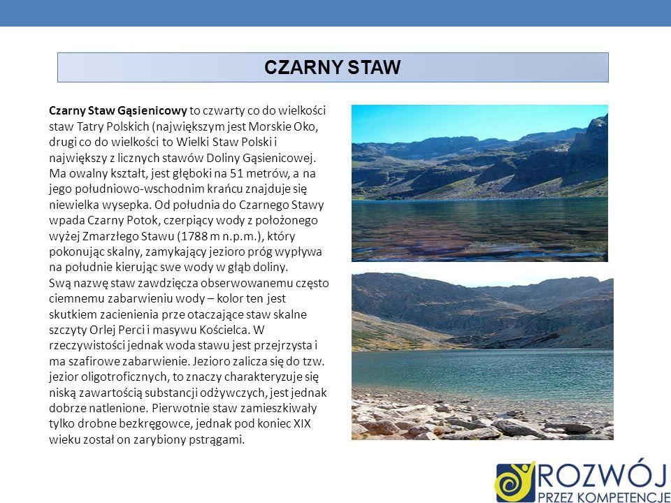 CZARNY STAW Czarny Staw Gąsienicowy to czwarty co do wielkości staw Tatry Polskich (największym jest Morskie Oko, drugi co do wielkości to Wielki Staw