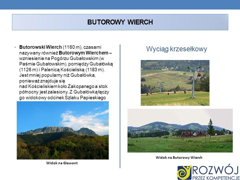 BUTOROWY WIERCH Butorowski Wierch (1160 m), czasami nazywany również Butorowym Wierchem – wzniesienie na Pogórzu Gubałowskim (w Paśmie Gubałowskim), p
