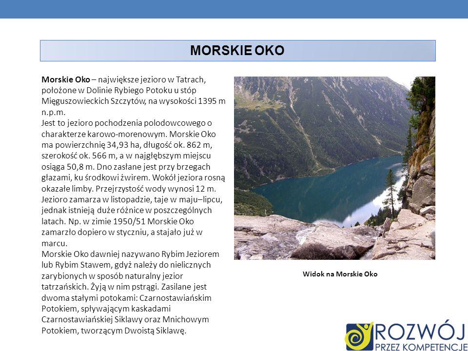 MORSKIE OKO Morskie Oko – największe jezioro w Tatrach, położone w Dolinie Rybiego Potoku u stóp Mięguszowieckich Szczytów, na wysokości 1395 m n.p.m.