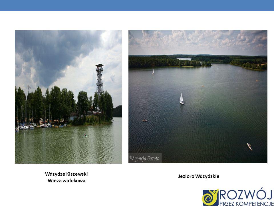 Wdzydze Kiszewski Wieża widokowa Jezioro Wdzydzkie