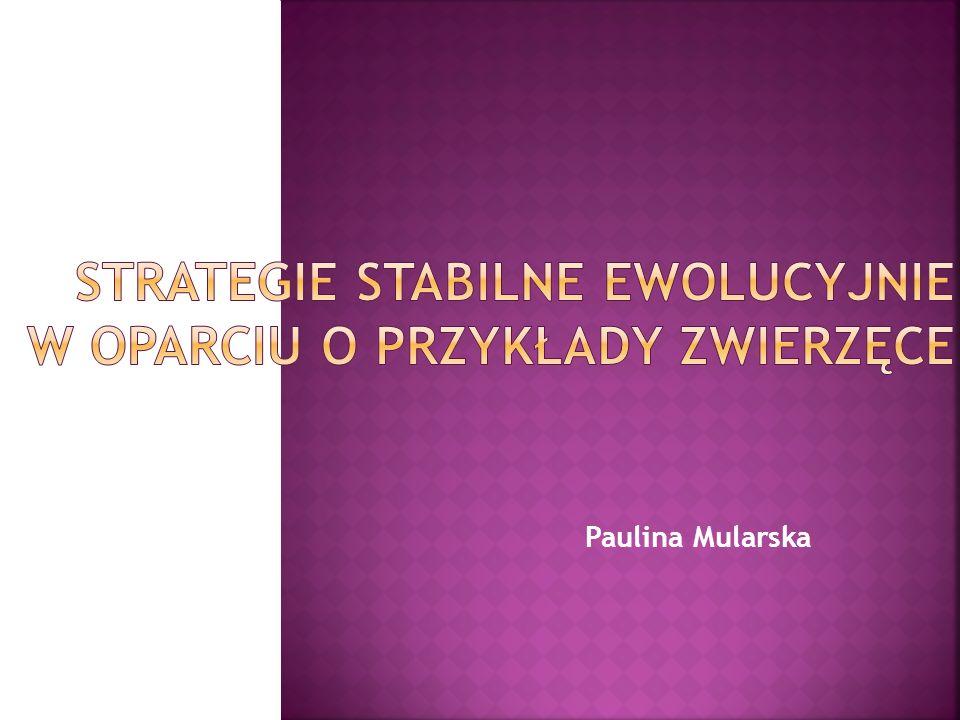 Paulina Mularska