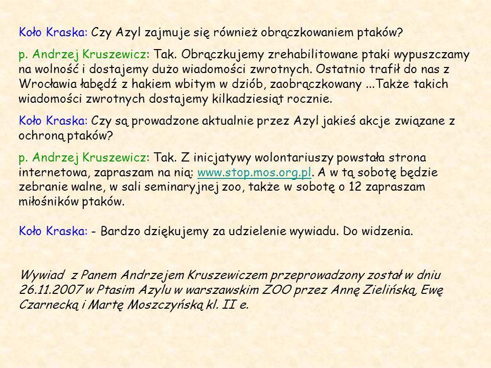 Koło Kraska: Czy Azyl zajmuje się również obrączkowaniem ptaków? p. Andrzej Kruszewicz: Tak. Obrączkujemy zrehabilitowane ptaki wypuszczamy na wolność