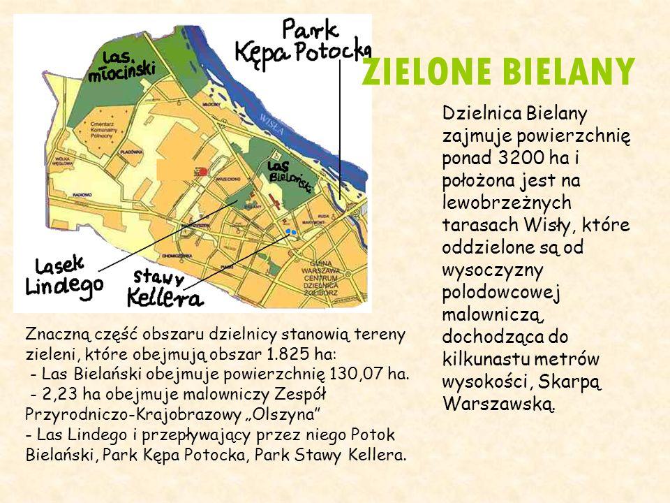 Dzielnica Bielany zajmuje powierzchnię ponad 3200 ha i położona jest na lewobrzeżnych tarasach Wisły, które oddzielone są od wysoczyzny polodowcowej m