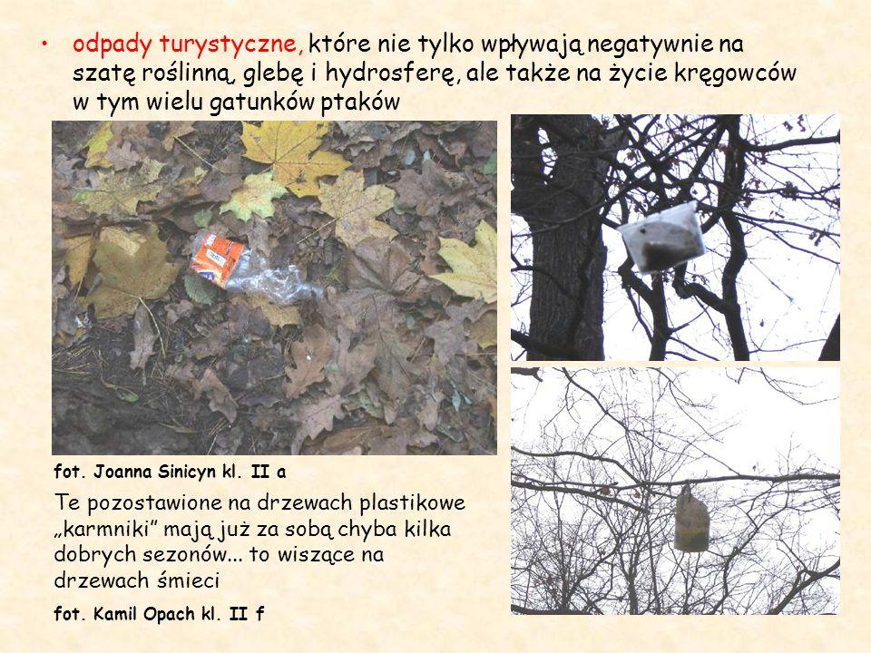 odpady turystyczne, które nie tylko wpływają negatywnie na szatę roślinną, glebę i hydrosferę, ale także na życie kręgowców w tym wielu gatunków ptakó