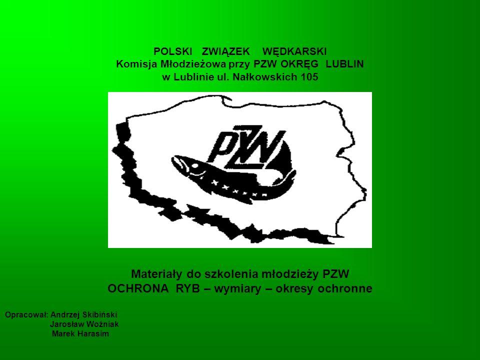 AMUR BIAŁY (Ctenopharyngodon idella) Wymiar ochronny - nie ma Rekord Polski - 39,2 kg - 132 cm Okres ochronny - nie ma Limit dzienny - 3 szt.