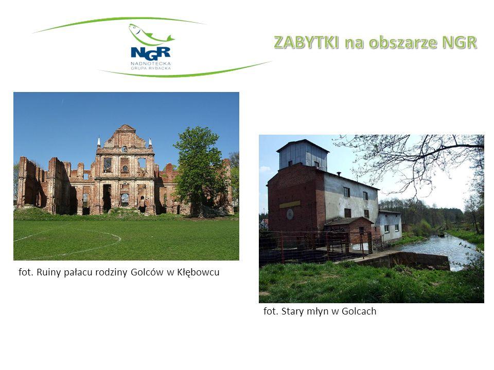 fot. Stary młyn w Golcach fot. Ruiny pałacu rodziny Golców w Kłębowcu