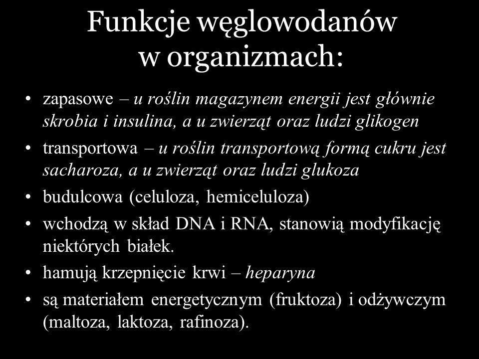 Funkcje węglowodanów w organizmach: zapasowe – u roślin magazynem energii jest głównie skrobia i insulina, a u zwierząt oraz ludzi glikogen transporto