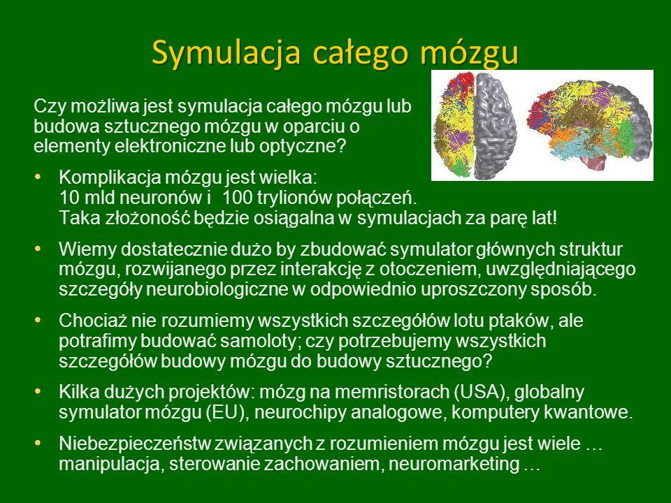 Symulacja całego mózgu Czy możliwa jest symulacja całego mózgu lub budowa sztucznego mózgu w oparciu o elementy elektroniczne lub optyczne? Komplikacj