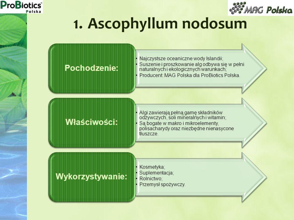 1. Ascophyllum nodosum Najczystsze oceaniczne wody Islandii; Suszenie i proszkowanie alg odbywa się w pełni naturalnych i ekologicznych warunkach; Pro