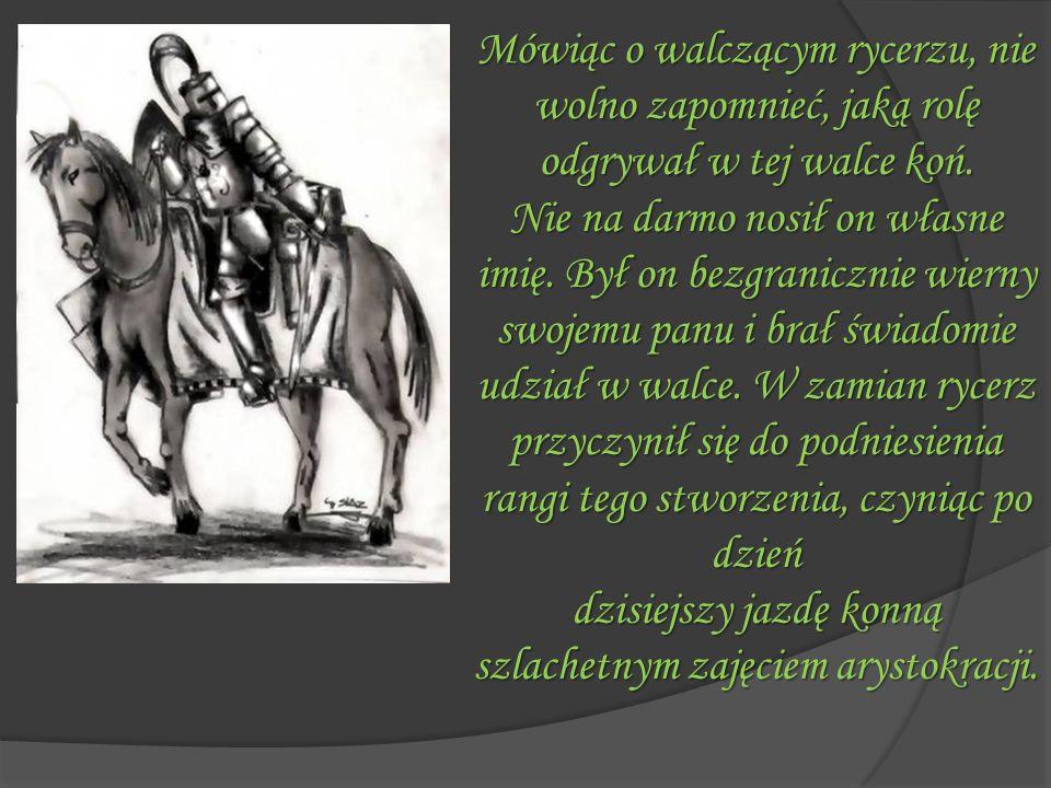 Mówiąc o walczącym rycerzu, nie wolno zapomnieć, jaką rolę odgrywał w tej walce koń. Nie na darmo nosił on własne imię. Był on bezgranicznie wierny sw