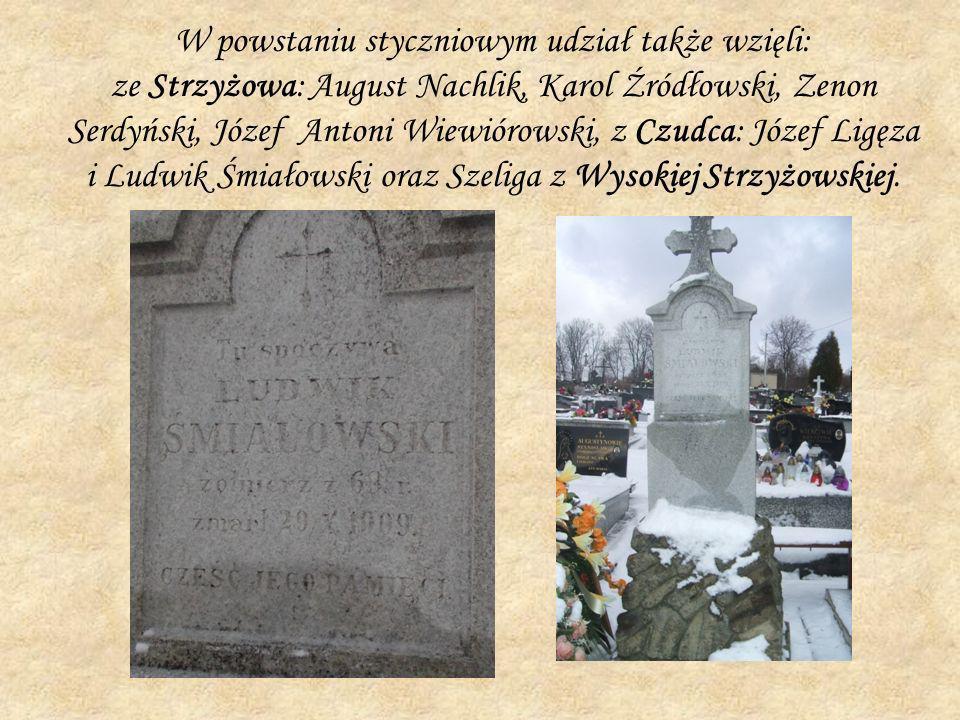 W powstaniu styczniowym udział także wzięli: ze Strzyżowa: August Nachlik, Karol Źródłowski, Zenon Serdyński, Józef Antoni Wiewiórowski, z Czudca: Józ