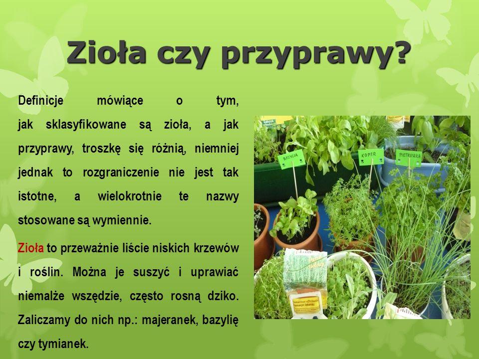 Świeże zioła uprawiane w naszych przydomowych ogródkach czy domach są wspaniałym rozwiązaniem.