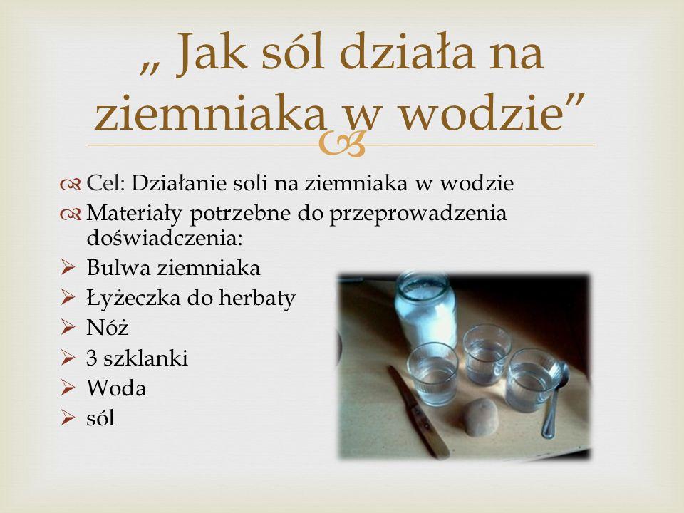 Cel: Działanie soli na ziemniaka w wodzie Materiały potrzebne do przeprowadzenia doświadczenia: Bulwa ziemniaka Łyżeczka do herbaty Nóż 3 szklanki Wod
