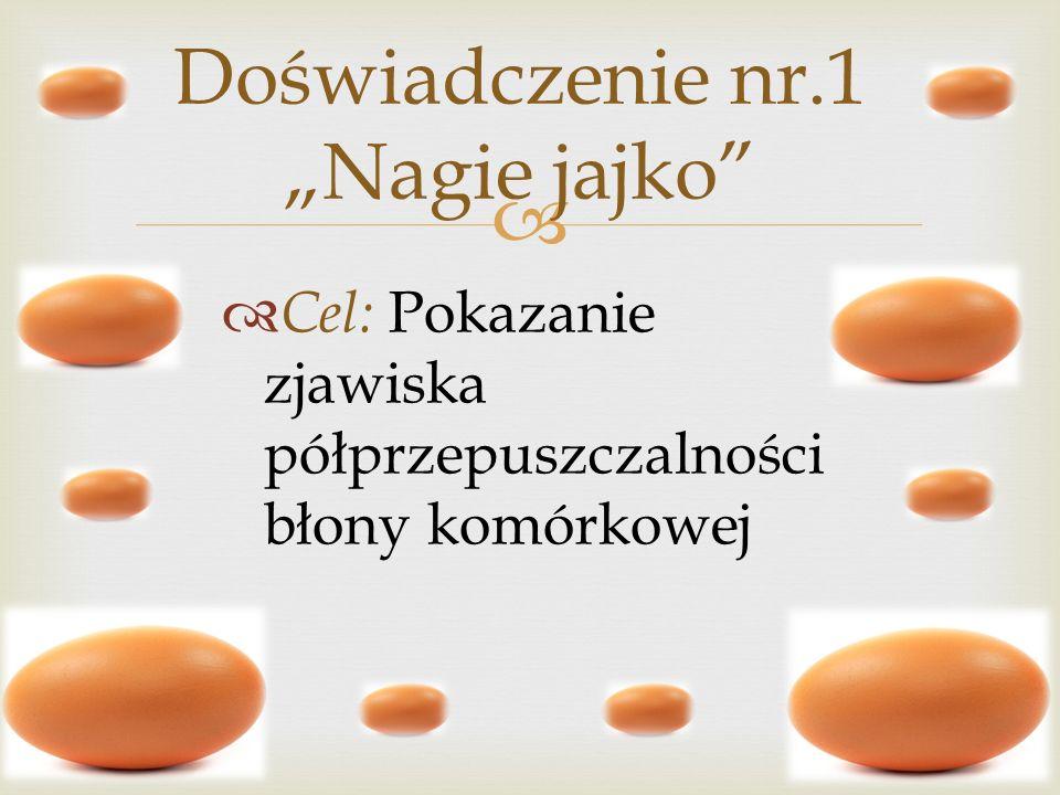 Cel: Pokazanie zjawiska półprzepuszczalności błony komórkowej Doświadczenie nr.1 Nagie jajko