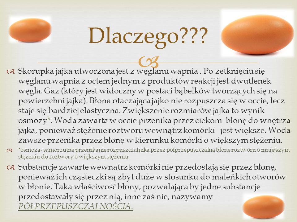 Skorupka jajka utworzona jest z węglanu wapnia. Po zetknięciu się węglanu wapnia z octem jednym z produktów reakcji jest dwutlenek węgla. Gaz (który j