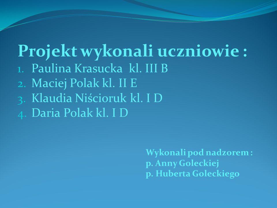 Projekt wykonali uczniowie : 1. Paulina Krasucka kl. III B 2. Maciej Polak kl. II E 3. Klaudia Niścioruk kl. I D 4. Daria Polak kl. I D Wykonali pod n