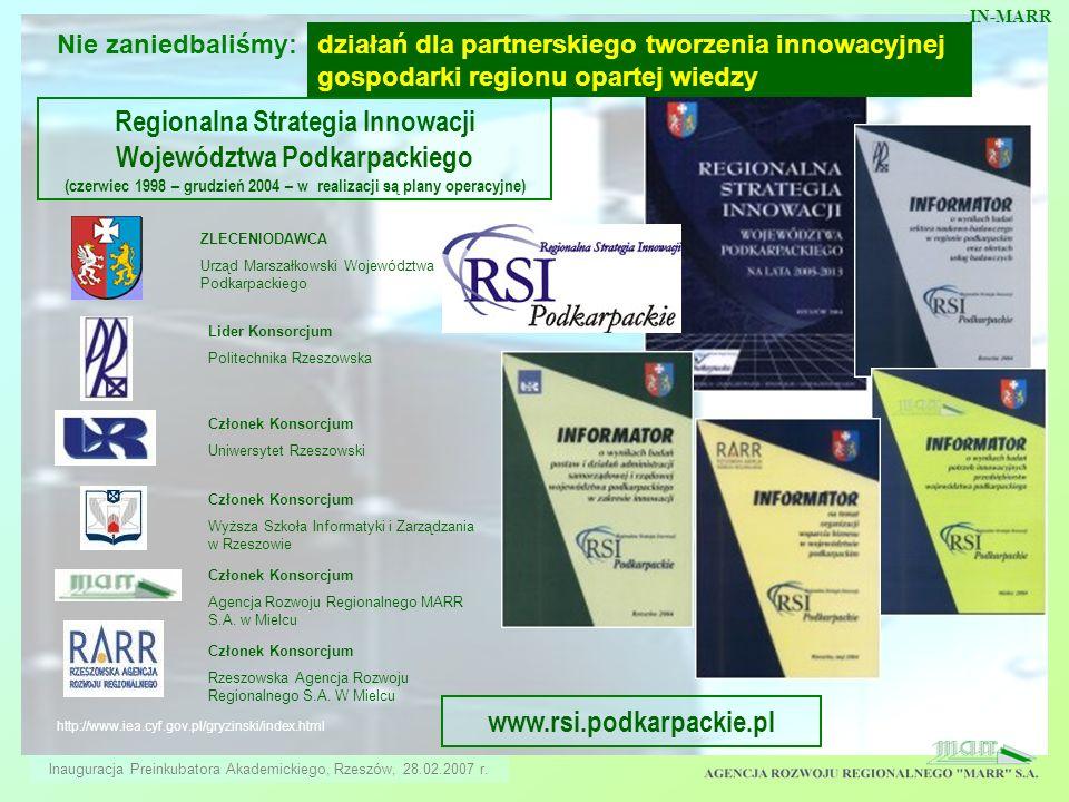 http://www.iea.cyf.gov.pl/gryzinski/index.html ZLECENIODAWCA Urząd Marszałkowski Województwa Podkarpackiego Regionalna Strategia Innowacji Województwa