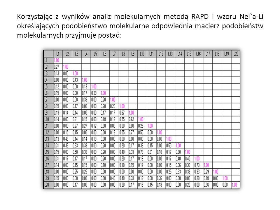 Korzystając z wyników analiz molekularnych metodą RAPD i wzoru Nei`a-Li określających podobieństwo molekularne odpowiednia macierz podobieństw molekul