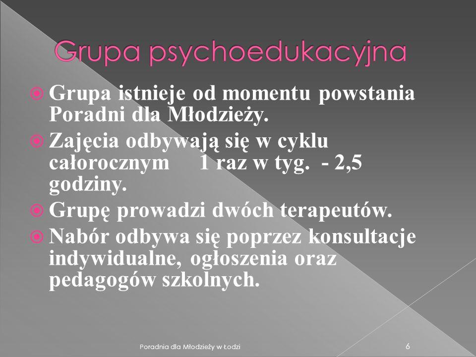 Cykl regularnych spotkań z dwojgiem psychoterapeutów, w którym uczestniczy cała rodzina.