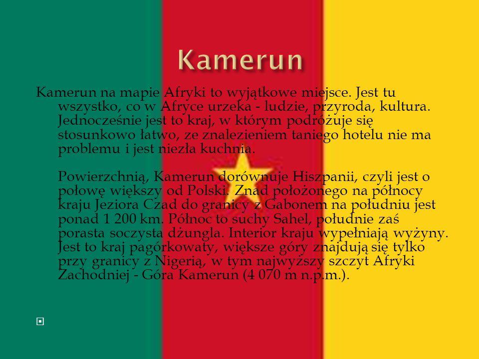 Kamerun na mapie Afryki to wyjątkowe miejsce. Jest tu wszystko, co w Afryce urzeka - ludzie, przyroda, kultura. Jednocześnie jest to kraj, w którym po