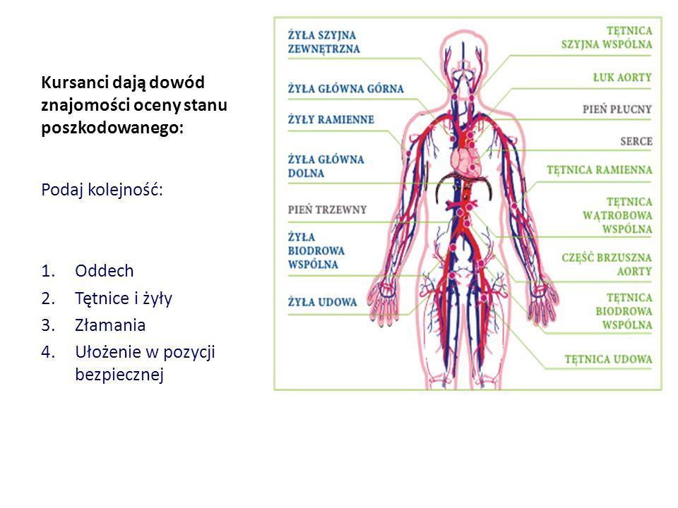 Kursanci dają dowód znajomości oceny stanu poszkodowanego: Podaj kolejność: 1.Oddech 2.Tętnice i żyły 3.Złamania 4.Ułożenie w pozycji bezpiecznej