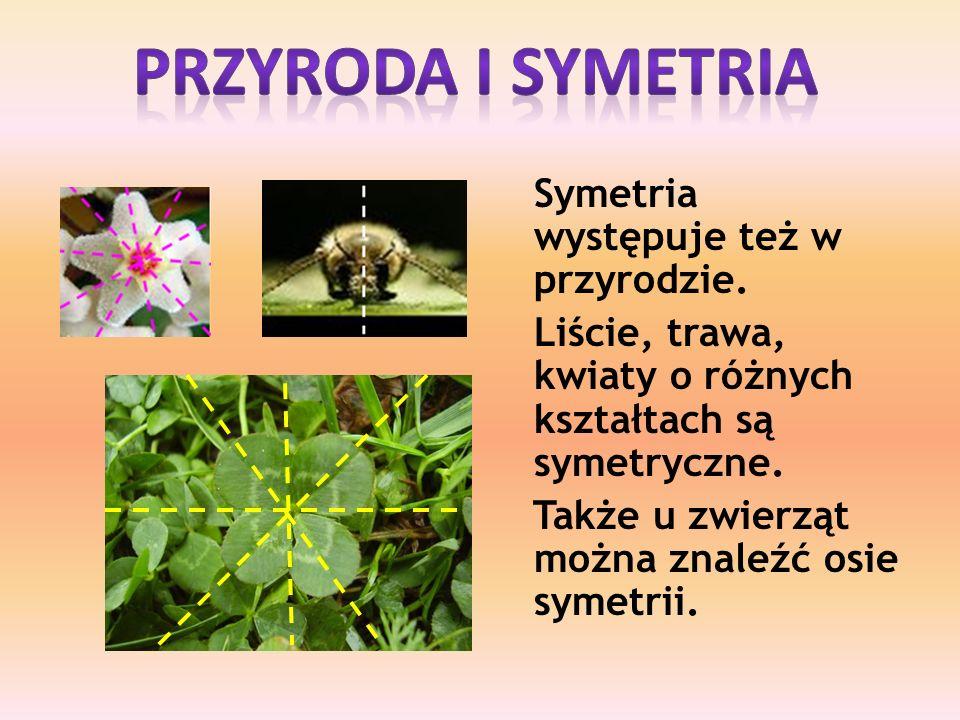 Symetria występuje też w przyrodzie.Liście, trawa, kwiaty o różnych kształtach są symetryczne.