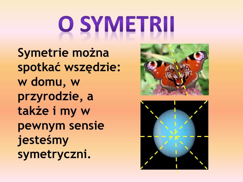 Symetrie można spotkać wszędzie: w domu, w przyrodzie, a także i my w pewnym sensie jesteśmy symetryczni.