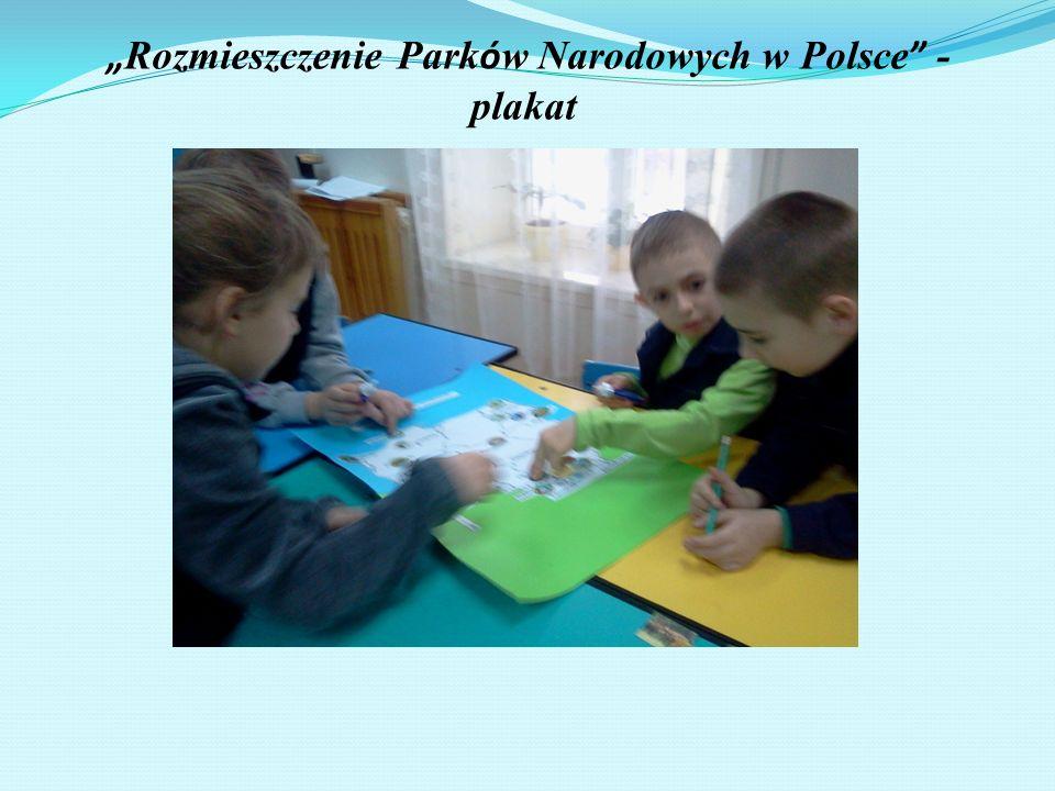 Rozmieszczenie Park ó w Narodowych w Polsce - plakat