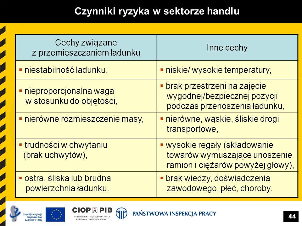 44 Czynniki ryzyka w sektorze handlu Cechy związane z przemieszczaniem ładunku Inne cechy niestabilność ładunku, niskie/ wysokie temperatury, niepropo