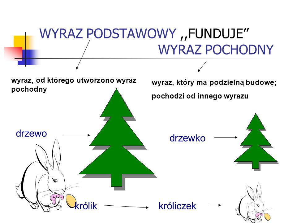 WYRAZ PODSTAWOWY,,FUNDUJE WYRAZ POCHODNY wyraz, od którego utworzono wyraz pochodny wyraz, który ma podzielną budowę; pochodzi od innego wyrazu drzewo