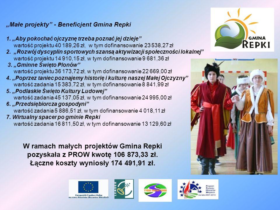 Małe projekty - Beneficjent Gmina Repki 1. Aby pokochać ojczyznę trzeba poznać jej dzieje wartość projektu 40 189,26 zł, w tym dofinansowanie 23 538,2