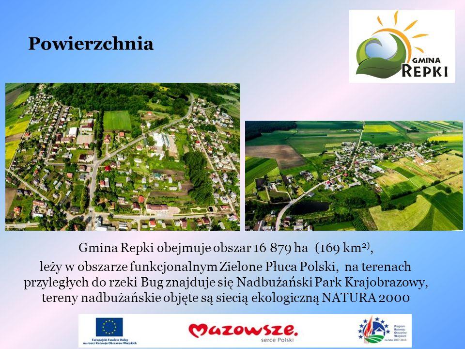 Powierzchnia Gmina Repki obejmuje obszar 16 879 ha (169 km 2), leży w obszarze funkcjonalnym Zielone Płuca Polski, na terenach przyległych do rzeki Bu