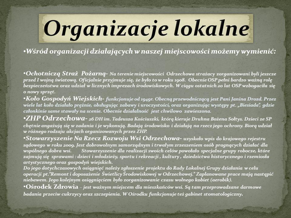 Wśród organizacji działających w naszej miejscowości możemy wymienić: Ochotniczą Straż Pożarną- Na terenie miejscowości Odrzechowa strażacy zorganizow