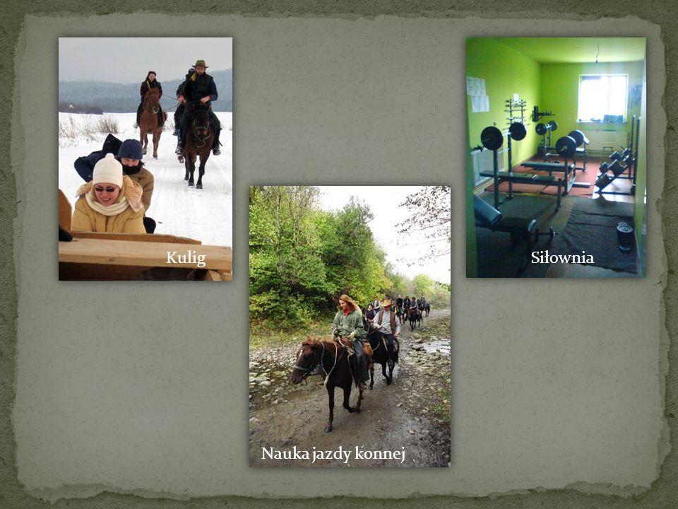 KuligSiłownia Nauka jazdy konnej