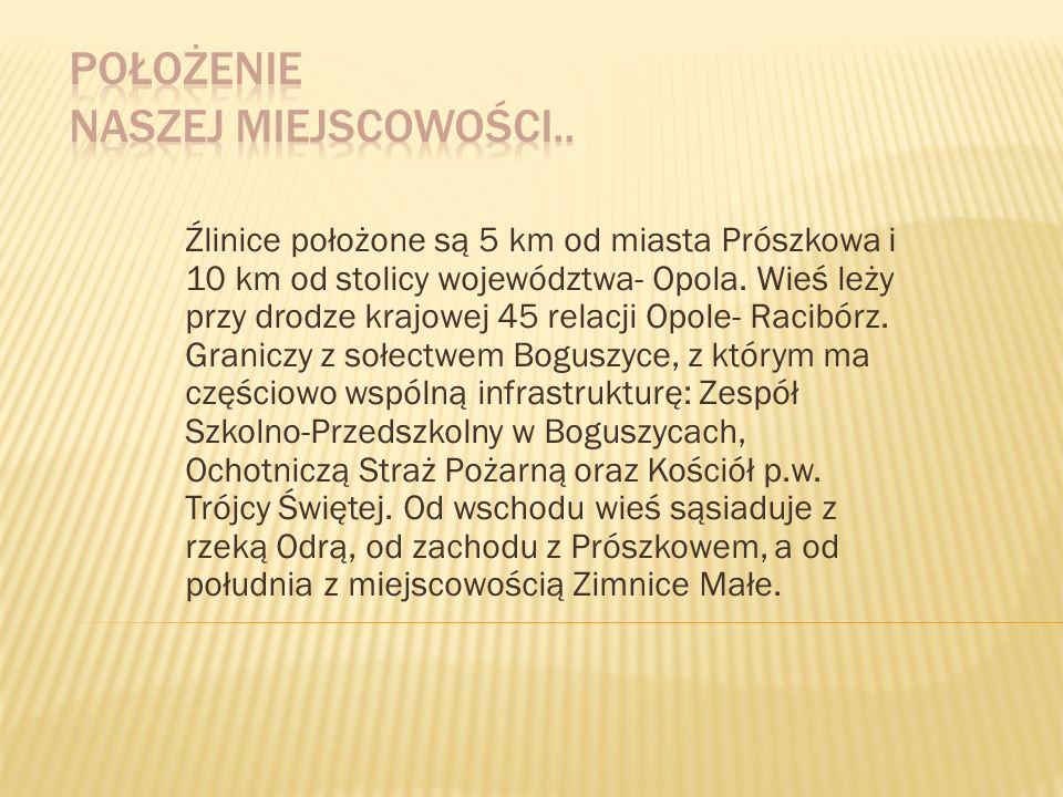 Źlinice położone są 5 km od miasta Prószkowa i 10 km od stolicy województwa- Opola. Wieś leży przy drodze krajowej 45 relacji Opole- Racibórz. Granicz