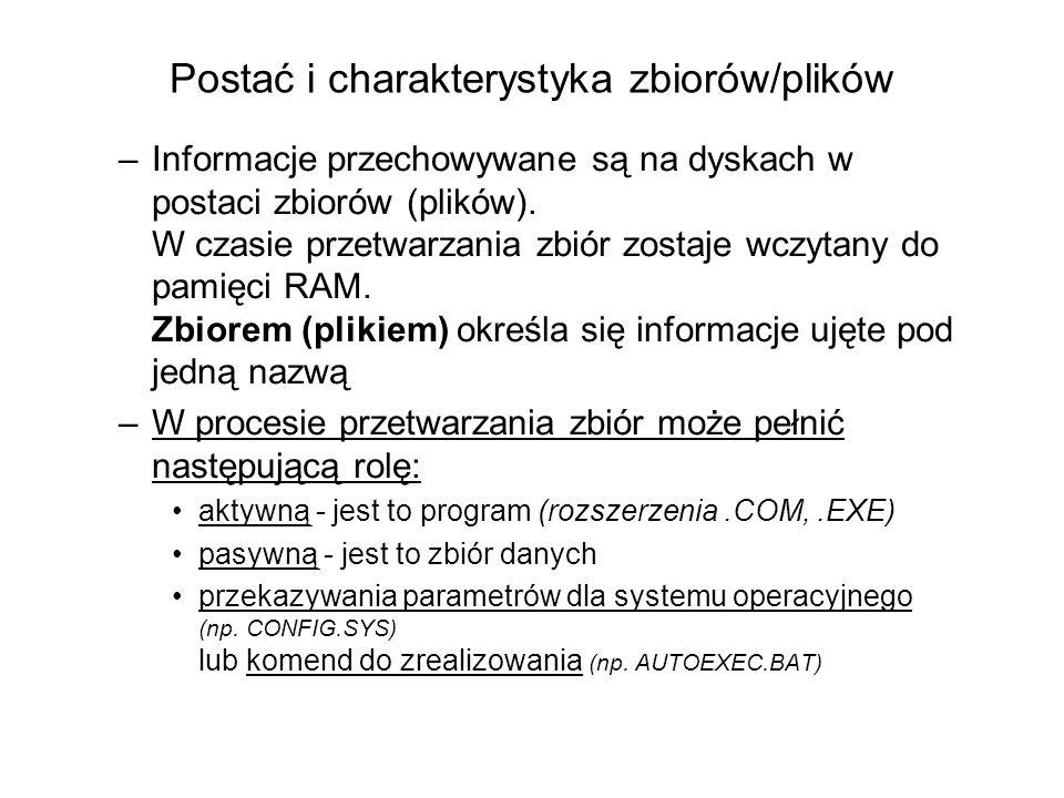 Postać i charakterystyka zbiorów/plików –Informacje przechowywane są na dyskach w postaci zbiorów (plików).