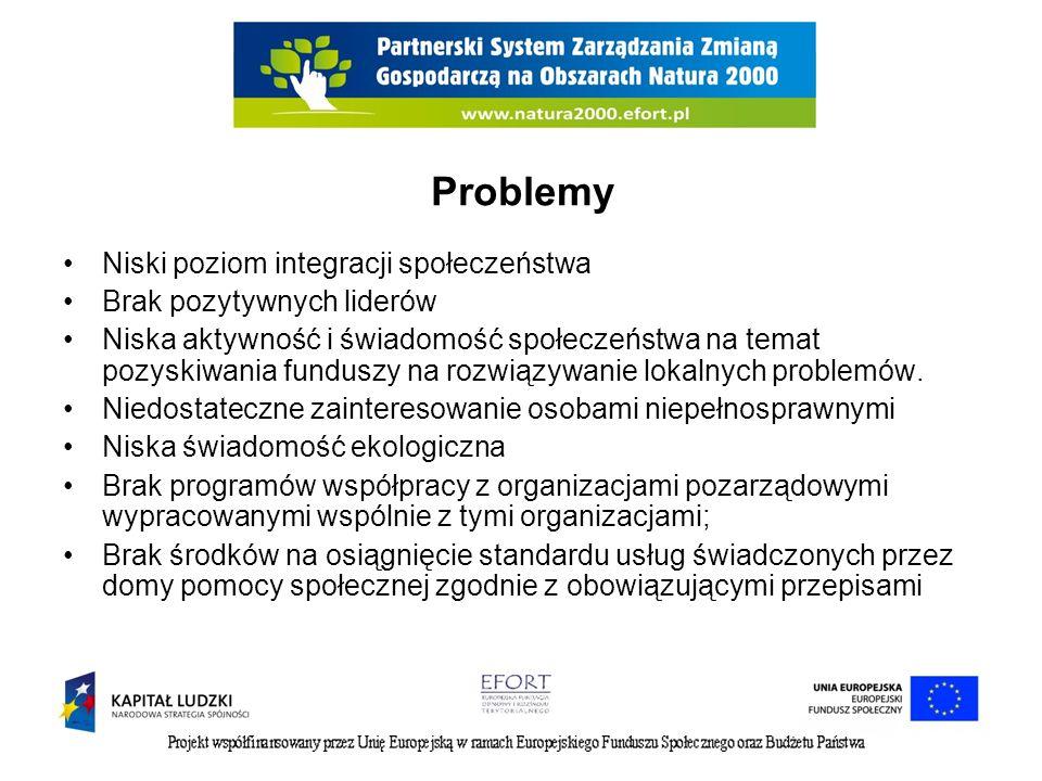 Problemy Niski poziom integracji społeczeństwa Brak pozytywnych liderów Niska aktywność i świadomość społeczeństwa na temat pozyskiwania funduszy na rozwiązywanie lokalnych problemów.