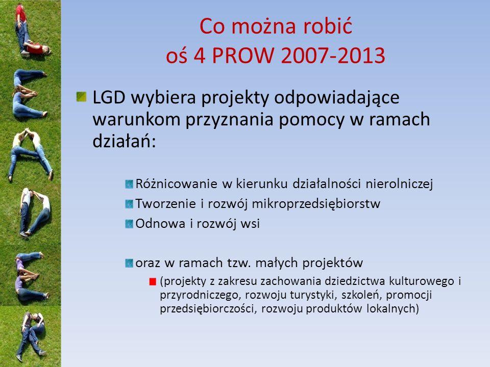 Co można robić oś 4 PROW 2007-2013 LGD wybiera projekty odpowiadające warunkom przyznania pomocy w ramach działań: Różnicowanie w kierunku działalnośc