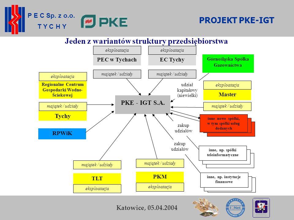 P E C Sp. z o.o. T Y C H Y K. Zamasz Kraków, 5-6 listopada 2003 17 zakup udziałów inne nowe spółki, w tym spółki usług dodanych PKE - IGT S.A. PEC w T