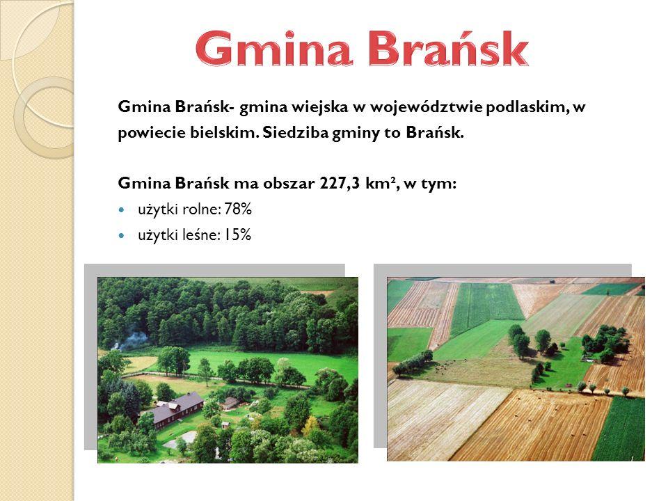Gmina Brańsk- gmina wiejska w województwie podlaskim, w powiecie bielskim. Siedziba gminy to Brańsk. Gmina Brańsk ma obszar 227,3 km², w tym: użytki r
