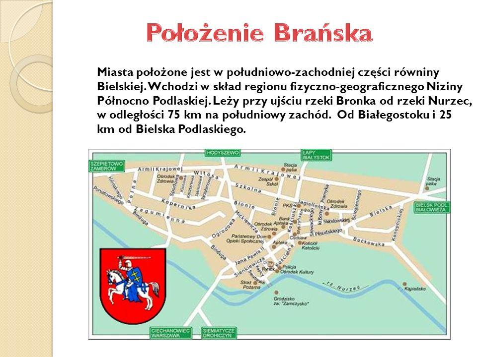 Miasta położone jest w południowo-zachodniej części równiny Bielskiej.