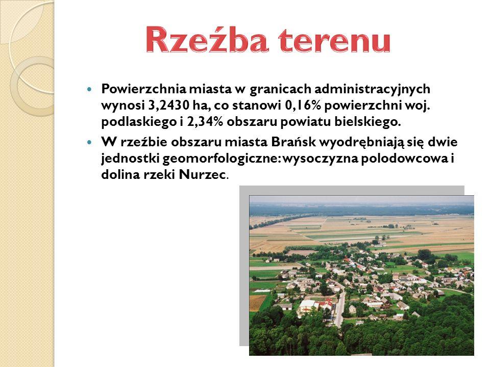 Powierzchnia miasta w granicach administracyjnych wynosi 3,2430 ha, co stanowi 0,16% powierzchni woj.
