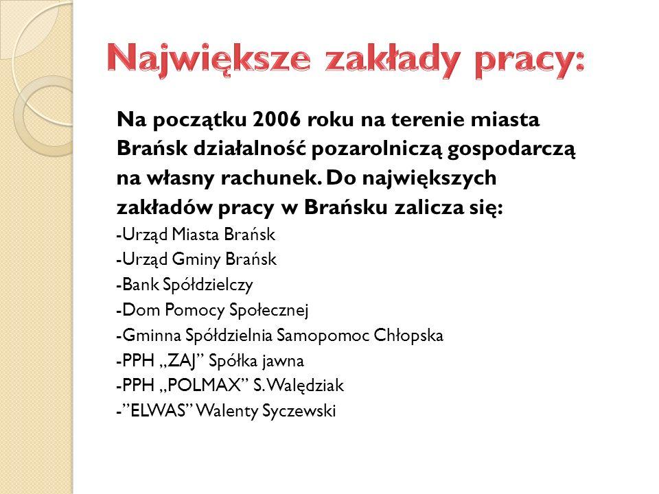 Na początku 2006 roku na terenie miasta Brańsk działalność pozarolniczą gospodarczą na własny rachunek.