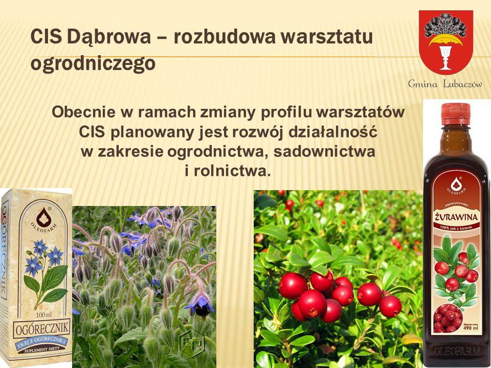 CIS Dąbrowa – rozbudowa warsztatu ogrodniczego Obecnie w ramach zmiany profilu warsztatów CIS planowany jest rozwój działalność w zakresie ogrodnictwa, sadownictwa i rolnictwa.