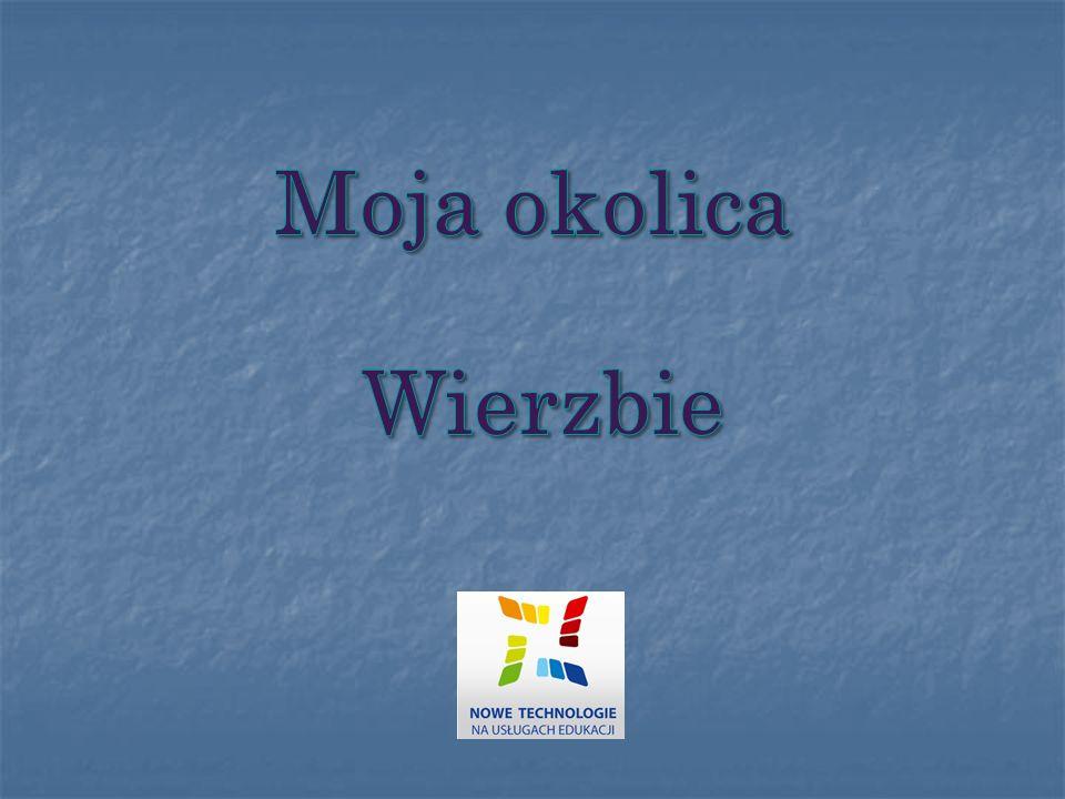 Wierzbie –wieś w Polsce położona w województwie, w powiecie oleskim, w gminie Praszka, przy drodze krajowej nr 45 z Wielunia do Opola.