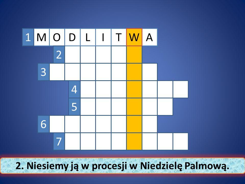 MTAILDOW1 2 3 4 5 6 7 2. Niesiemy ją w procesji w Niedzielę Palmową.